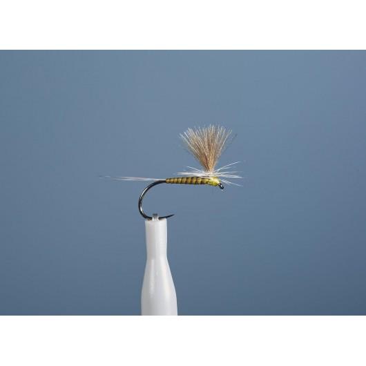 Parachutes Dc 102 Bl De...