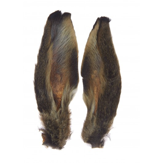 Paire Oreilles Lièvre MDC