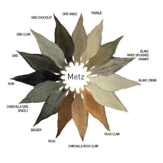 Cou De Coq Metz - Grade 3...